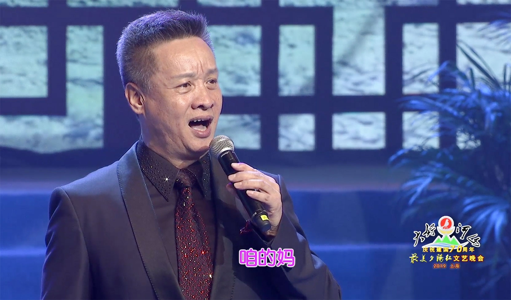 """大好河山2019上海""""最美夕阳红""""文艺晚会 歌曲《母亲》阎维文"""
