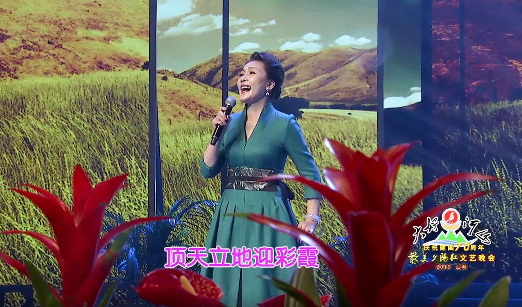 """大好河山2019上海""""最美夕阳红""""文艺晚会 歌曲《绒花》方琼"""