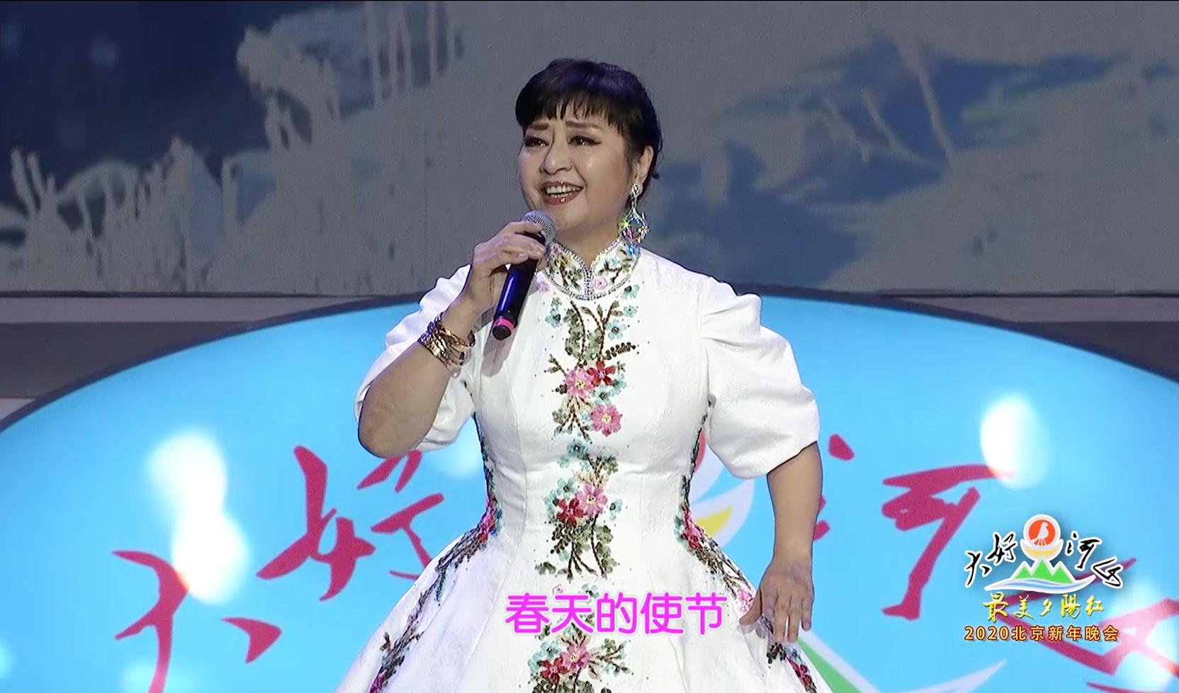 """大好河山2020北京""""最美夕阳红""""新年晚会 歌曲《我爱你塞北的雪》殷秀梅"""