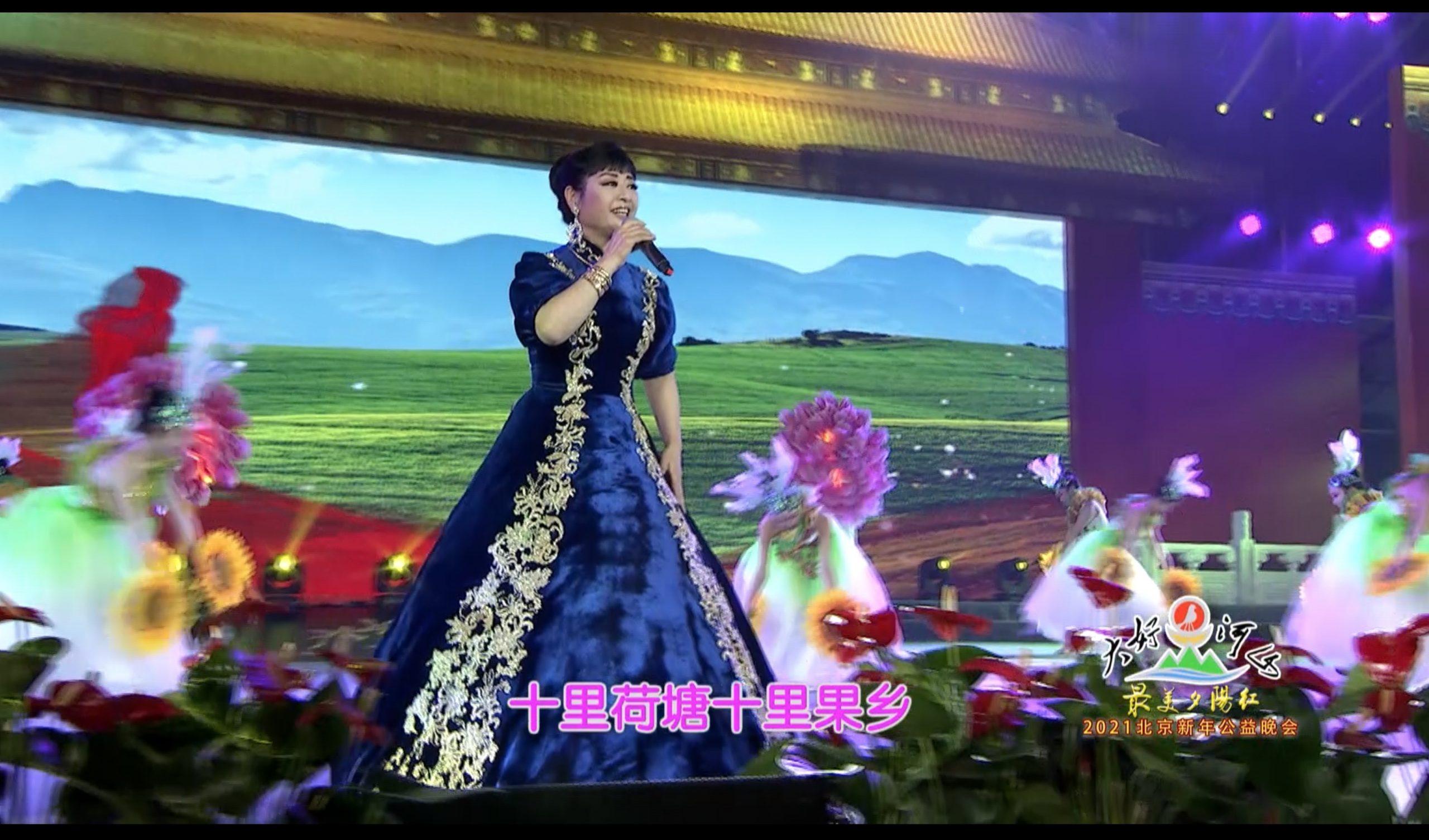 2021北京新年公益晚会 歌曲《在希望的田野上》殷秀梅